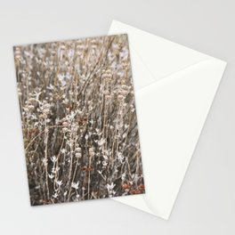 Native California Florals Stationery Cards