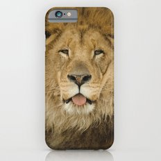 Face of a Lion Slim Case iPhone 6s