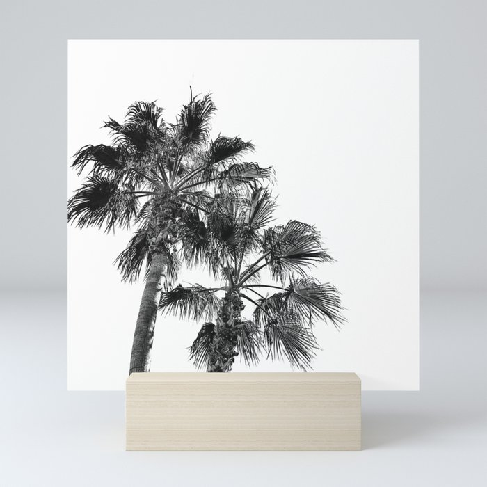Big Sur Palms | Black and White Palm Trees California Summer Sky Beach Surfing Botanical Photography Mini Art Print