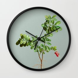 Vintage Lingonberry Botanical Illustration on Mint Green Wall Clock