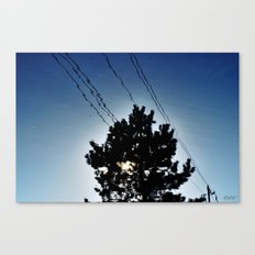 Reflect. Canvas Print