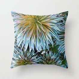 Star Plant Teal Throw Pillow