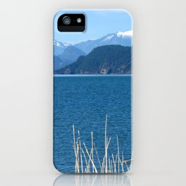 Blue Vista iPhone Case