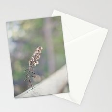 Coquette fence Stationery Cards