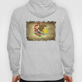 State flag of Illinois with grungy vintage textures Hoody