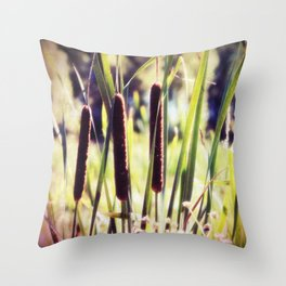 Three Cattails in Strong Sunlight Retro Style Throw Pillow