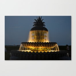 fountain lights Canvas Print