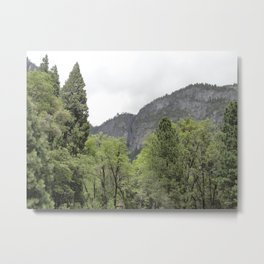 Yosemite Valley 10 Metal Print