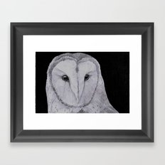 Barn Owl Pencil Framed Art Print