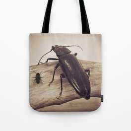 Viewpoints Tote Bag
