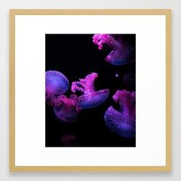 Jammin Jellys Framed Art Print