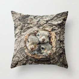 Peekaboo Baby Squirrels  Throw Pillow