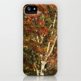 The Dying Leaves' Final Passion iPhone Case