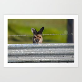 Can I come in? Art Print