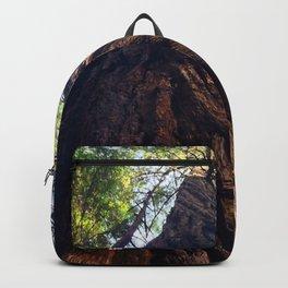 Muir Woods Backpack