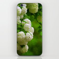 Flower Wall iPhone & iPod Skin