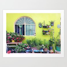 Mexican Yard Art Print