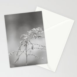 Last year Stationery Cards