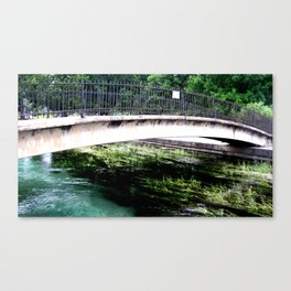 Water's Just Right Canvas Print