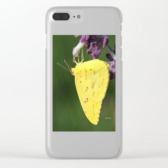 Orange Sulphur Butterfly Clear iPhone Case