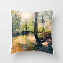 I Wish I Had A River I Could Sail Away On Throw Pillow