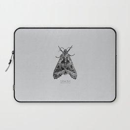 Cabbage Moth [Mamestra brassicae] Laptop Sleeve