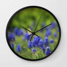 Grape Hyacinth in Spring Wall Clock