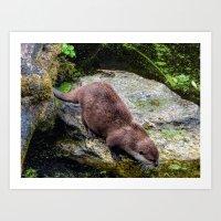 otter Art Prints featuring Otter by Lynn Bolt