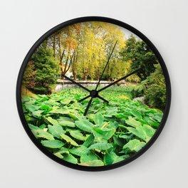 Taro field Wall Clock