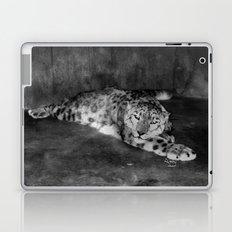Lazy Leopard Laptop & iPad Skin