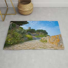Once Upon a Guernsey Path Rug