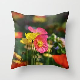 Frivolous Blooming Coral, Red and Yellow Anemones in Spring Throw Pillow