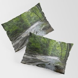Appalachian Adventure - Ricketts Glen State Park Pillow Sham