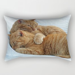 Brotherly Love Rectangular Pillow