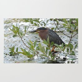 Green Heron at Lakeside Rug