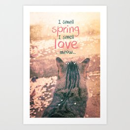 Kitty Cat and Spring Falling Cherry Blossom Petals Art Print
