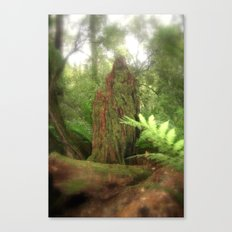 Forest Green Canvas Print