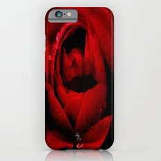 A kiss from a rose iPhone 6s Slim Case