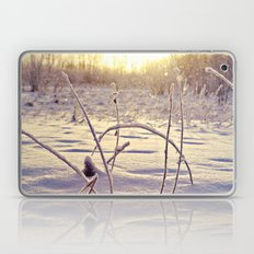 Alaskan Snowfall Laptop & iPad Skin