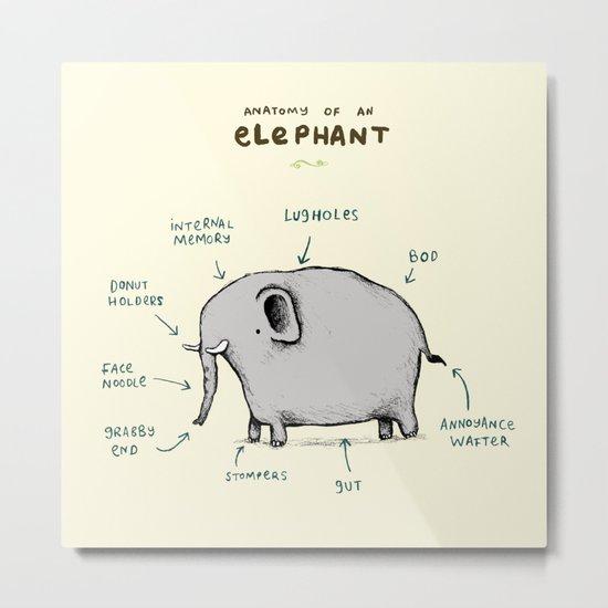 Anatomy of an Elephant Metal Print