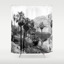 Palm Canyon near Palm Springs c.1901 Shower Curtain