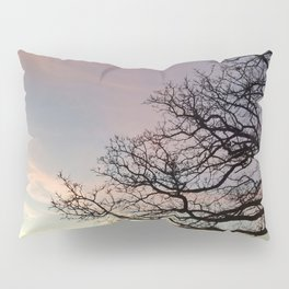 Subtle savanna sunset - Pheasant Branch Conservancy Pillow Sham