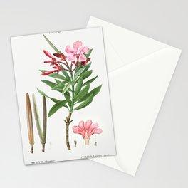 Oleander (Nerium oleander) from Traite des Arbres et Arbustes que lon cultive en France en pleine te Stationery Cards