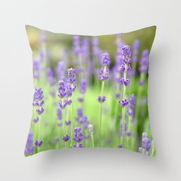 Lavender Stems in a Field Throw Pillow
