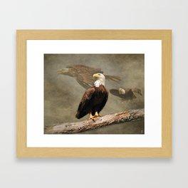 Dreaming of Freedom Bald Eagle Framed Art Print