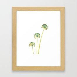 three flowers 4 Framed Art Print