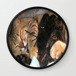 Mother Tabby Cat Suckling Four Newborn Kittens Wall Clock