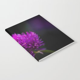 Purple Flower Spike by Reay of Light Photography Notebook