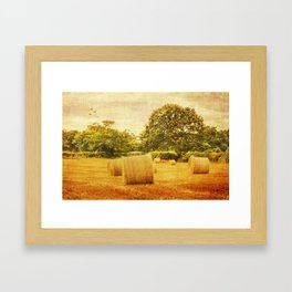 A day in the countryside Framed Art Print