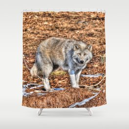 Arctic Wolf and Pine Tundra Shower Curtain